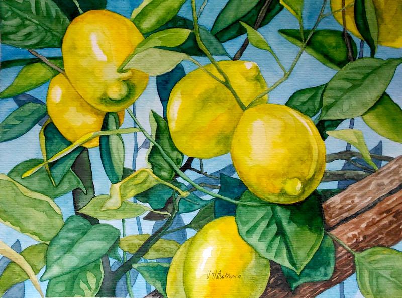 Limoneto